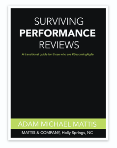 Adam Mattis: Surviving Performance Reviews